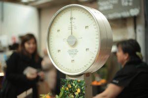 Metabolism balancing scale