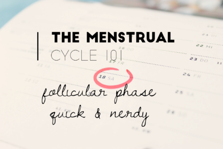 menstrual cycle: the follicular phase. FSH, LH, ovulation