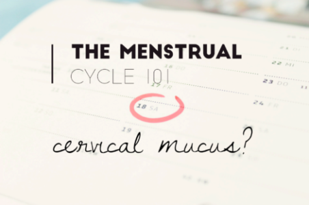 Cervical mucus changes throughout the month